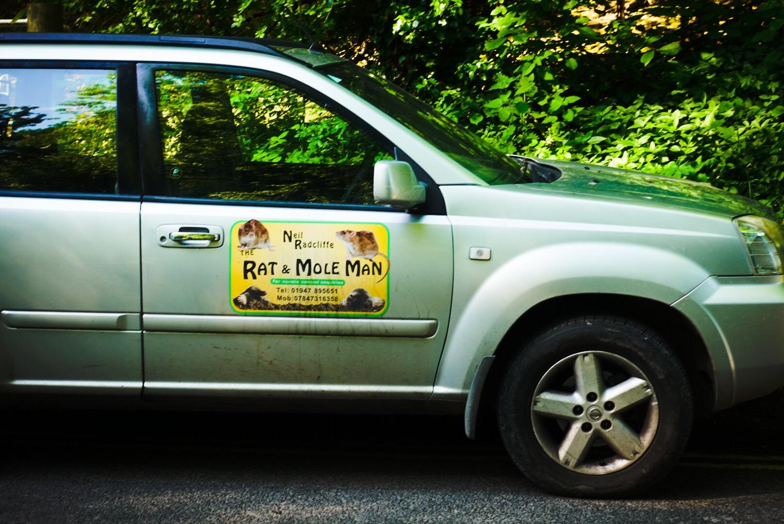Rat & Mole Man