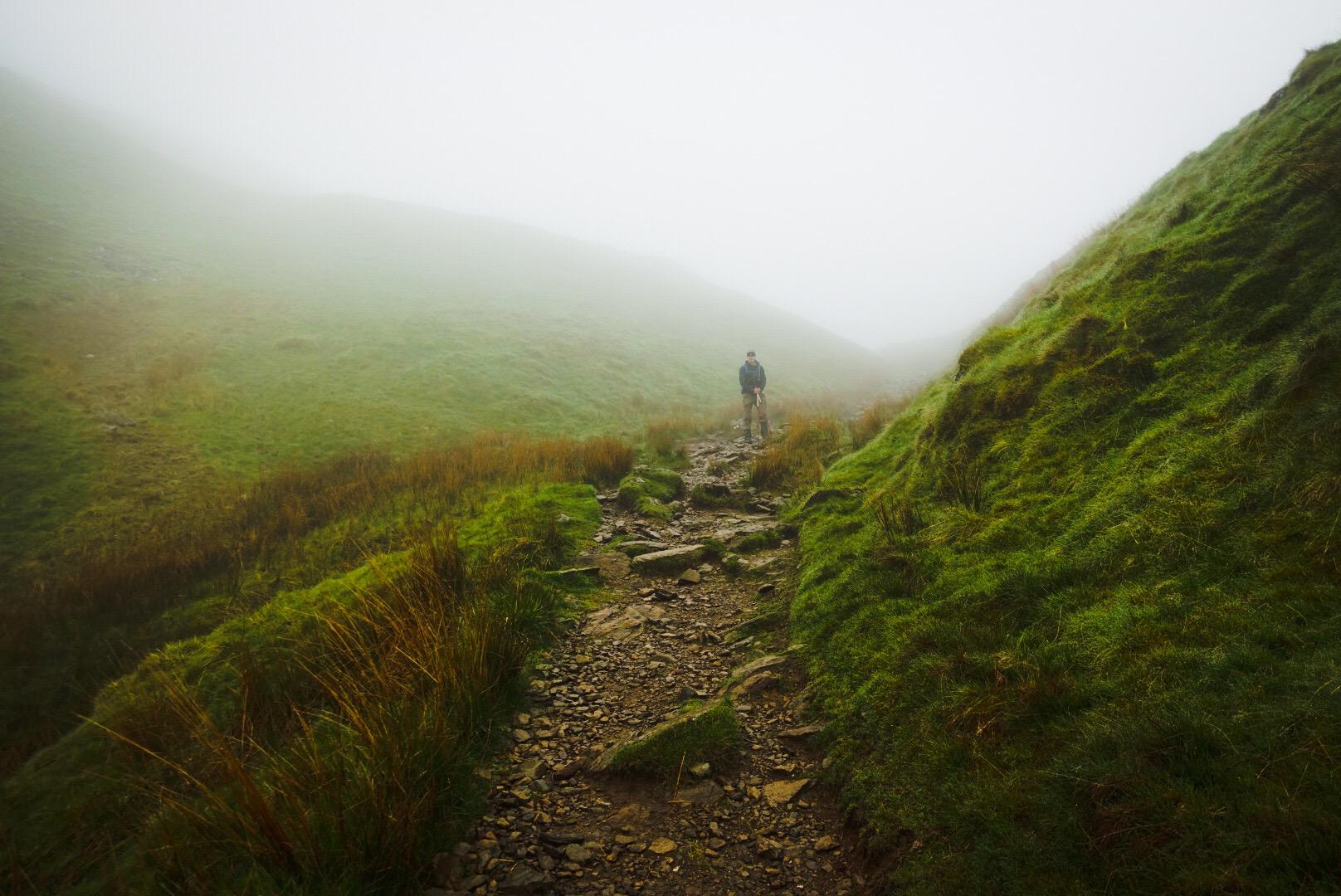 Climbing into the Mist