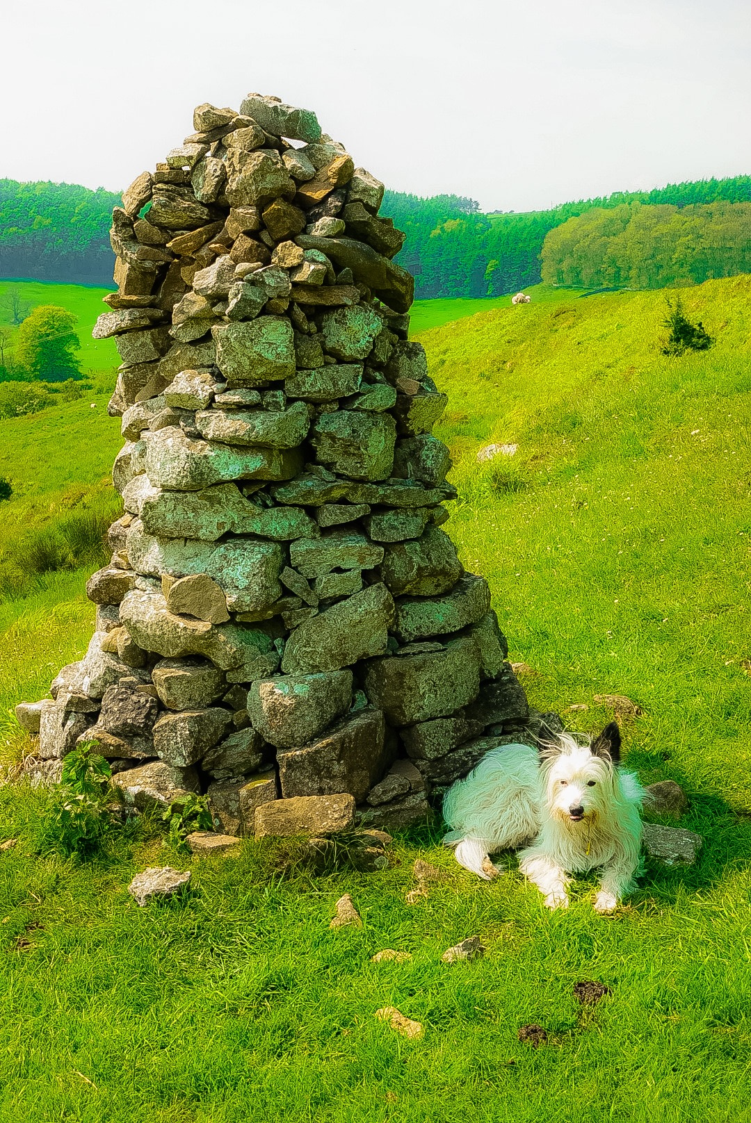White Cairn