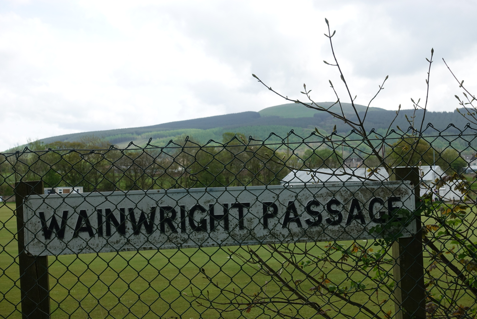 Wainwright Sign