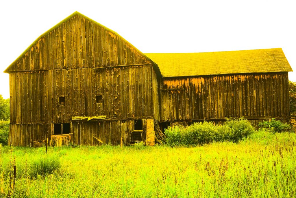Same Old Barn